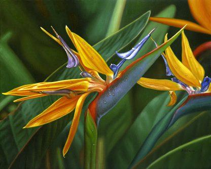 EE Bright Paradise, bird of paradise painting