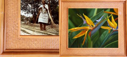 Efren Erese Bright Paradise Kauai Rattan Frame