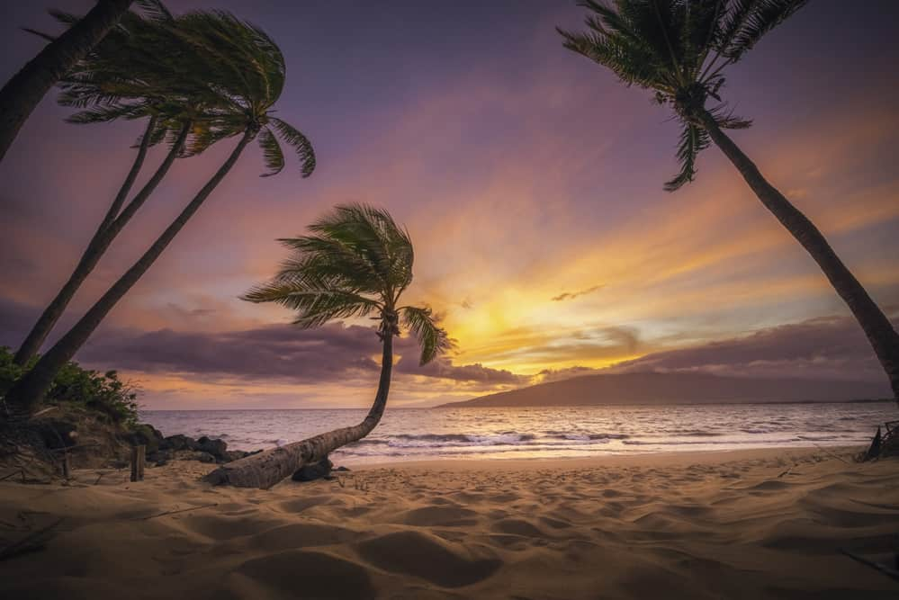 Kihei Dreaming Sunset